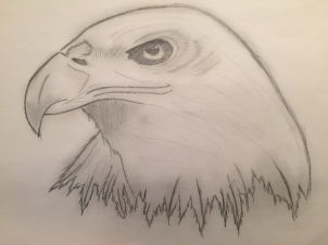 sketch by Sandra Botha